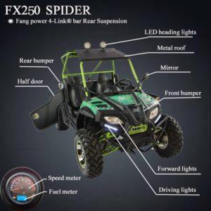 Shengwo Fx250 Spider 250cc Utv 250cc