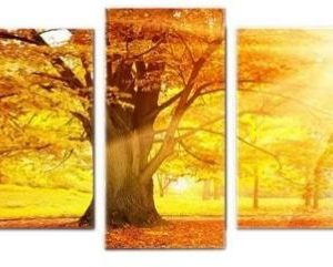 5 Pieces Set Wall Clock Picture Clock Wall Art Canvas Print – 5 Pieces Set Autumn Yellow Woods Wall Clock Picture Clock Wall Art Canvas Print